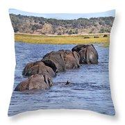 African Elephants Crossing Chobe River  Botswana Throw Pillow