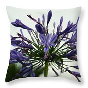 African Liliy I Throw Pillow