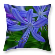 African Lily Throw Pillow