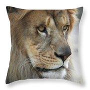 African Lion #8 Throw Pillow