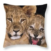 African Lion Cubs One Aint Happy Wldlife Rescue Throw Pillow