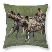 African Painted Hunting Dogs Throw Pillow