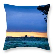 African Panoramic Sunset Landscape Throw Pillow