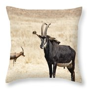 African Plains V2 Throw Pillow