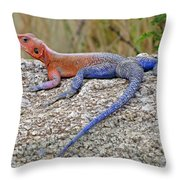 African Safari Lizard Throw Pillow