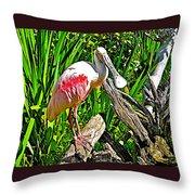 African Spoonbill In San Diego Zoo Safari Park In Escondido-california Throw Pillow