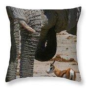 African Waterhole Throw Pillow