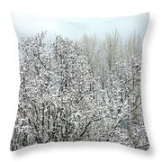 After A Light Snowfall Throw Pillow