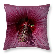 After A Rain Throw Pillow