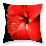 Georgia Red Hibiscus After A Rain Greensboro Georgia Art Throw Pillow