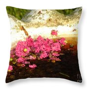 After Bloom Throw Pillow