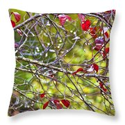 After The Autumn Rain 2 - Digital Paint Throw Pillow