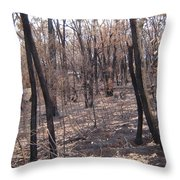 After The Fire Melbourne Throw Pillow