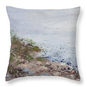 After The Fog Blew In Throw Pillow