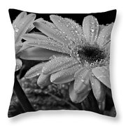 After The Rain Bw Throw Pillow