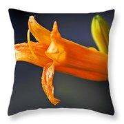 After The Rain Flower 2 Throw Pillow