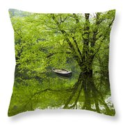 After The Rain On The Valley River Throw Pillow