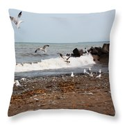After The Spring Thaw Throw Pillow