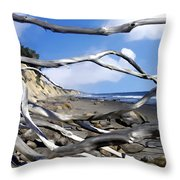 After The Storm Gaviota Throw Pillow