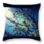 After The Storm In Blue Throw Pillow