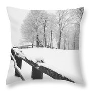After The Winter Storm Throw Pillow