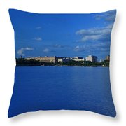 Afternoon At The Tidal Basin Throw Pillow