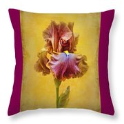 Afternoon Delight - 2 Throw Pillow