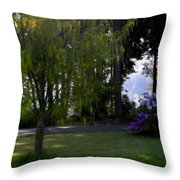 Afternoon Glow Throw Pillow