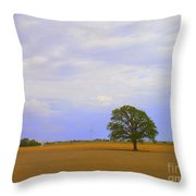 Afternoon In The Country Throw Pillow