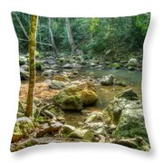 Afternoon In The Jungle Throw Pillow