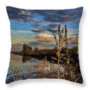 Late Afternoon In The Mead Wildlife Area Throw Pillow
