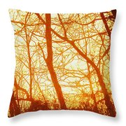 Afternoon Love  Throw Pillow