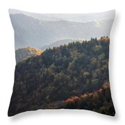 Afternoon On The Mountain Throw Pillow