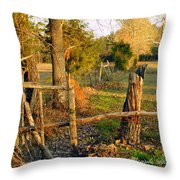 Afternoon Orange Gold Glow On Old Broken Fence Throw Pillow
