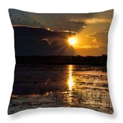Late Afternoon Reflection Throw Pillow