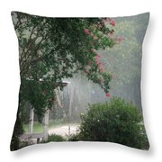 Afternoon Showers Throw Pillow