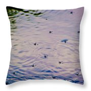 Afternoon Skaters Throw Pillow