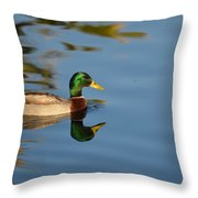 Afternoon Solitude Throw Pillow