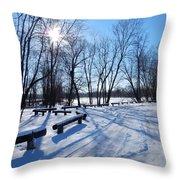 Afternoon Sun Throw Pillow