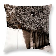 Afternoon Sun Bw Palm Springs Throw Pillow
