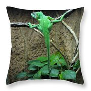 Afternoon Workout Throw Pillow