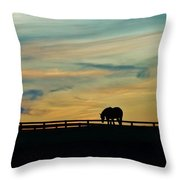 Against A Painted Sky Throw Pillow