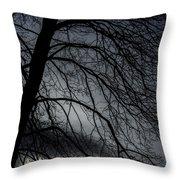 Against A Winter Sky Throw Pillow