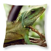 Agamidae Throw Pillow