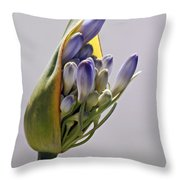 Agapanthus Blue Throw Pillow