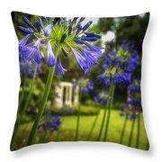 Agapanthus In The Garden Throw Pillow