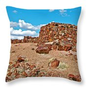 Agate House In Petrified Forest National Park-arizona  Throw Pillow