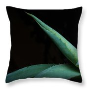 Agave Abstract 2 Throw Pillow