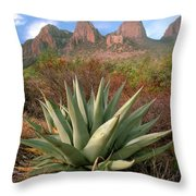 Agave And The Chisos Mountains Throw Pillow