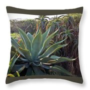 Agave At Sunset Throw Pillow
